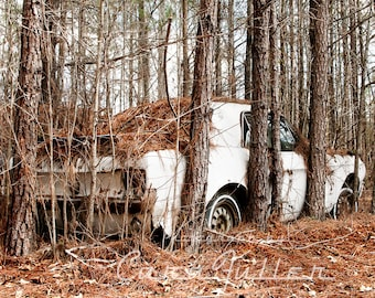 Photograph of a White 1967 Ford Mustang Pinned in by Pine Trees