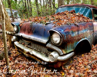 Photograph of a Blue 1957 Chevy in the Woods with Leaves