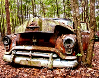 Photograph of the 1952 Oldsmobile Super 88 in the Woods