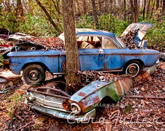 Photograph of a 1960-1963 Chevy Corvair on top of a Chevy Biscayne with a tree growing through it