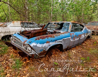 Photograph of a blue/silver 1968 Chevy Chevelle in the Woods