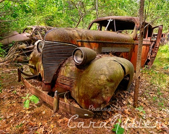 Photograph of the 1937 Rusty Chevy in the Woods
