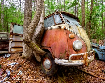 Photograph of a Pink VW Bus lifted by Tree