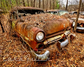Photograph of Very Rusty 1952 Ford in the Woods Covered with Pine Needles