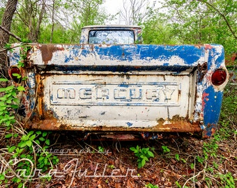 Photograph of a 1961 - 1968 Mercury Econoline Truck's Tailgate in the Woods