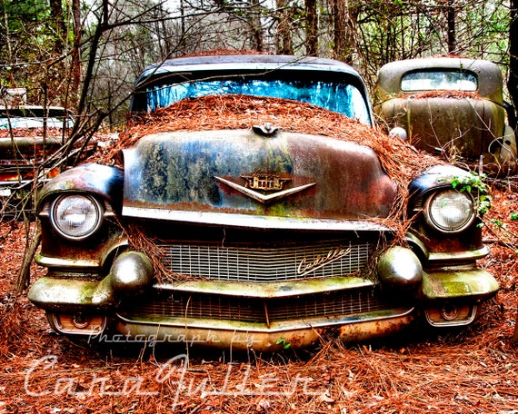 1956 Cadillac Rusty Car In Woods Photograph Etsy