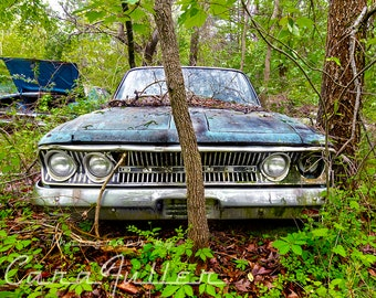 Photograph of a 1963 Blue Rambler in the Woods