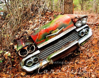 Photograph of a 1958 Chevy covered with Vines the Woods