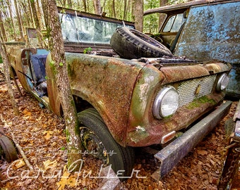 Photograph of a 1961-1970 International Scout Truck with a Tire on top In the woods