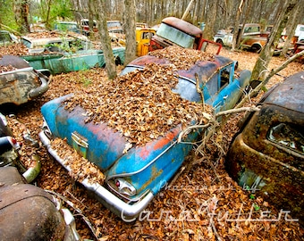 Photograph of a Blue 1958 Chevy from above in the Woods
