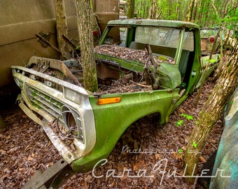 Photograph of a 1973-1975 Green Ford Truck with a tree growing out of it
