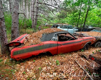 Photograph of a red 1972 - 1974 Plymouth Barracuda in the Woods