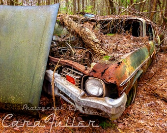 Photograph of a 1973 - 1974 Very Rusty Green Chevy Nova in the woods