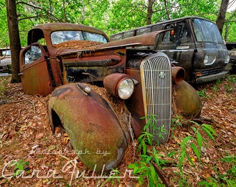 Photograph of a Rusty 1936 Buick in the woods