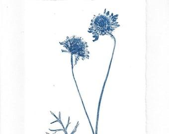 Monoprint Art Card Wild Pincushions No. 3