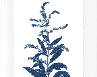 Monoprint Art Card Flowering Herb No.3