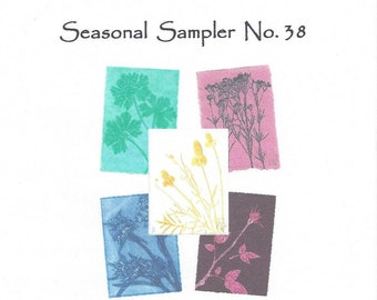 Seasonal Sampler No.38 Set of 5 Monoprint Notecards