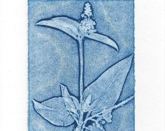 Monoprint Art Card Dune Flower No.2