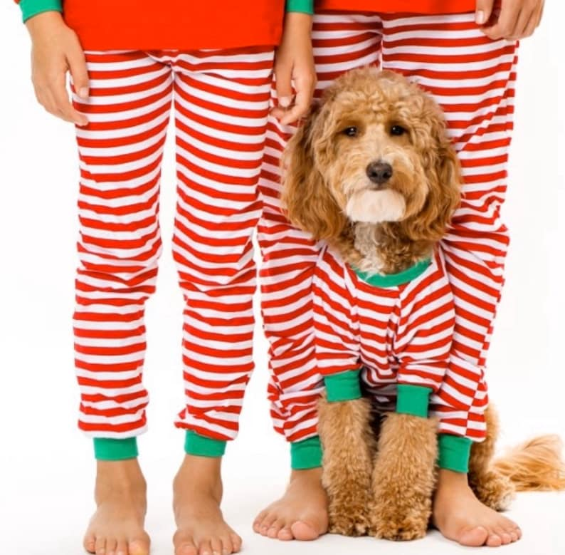 Candy Cane  Matching Holiday Dog and Family PJ Set image 0