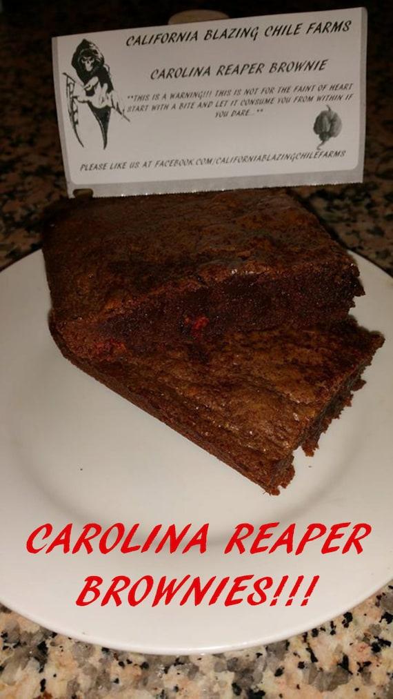 carolina reaper brownie or brookie hottest brownie or brookie etsy