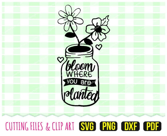 Bloom Where You Are Planted Stamp Svg Dxf Png Pdf Etsy