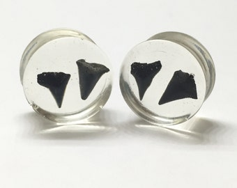 """18mm (11/16"""") Shark Tooth Collection - Shark Tooth Plugs - Gauges - Double Flared - Stretched Ears"""