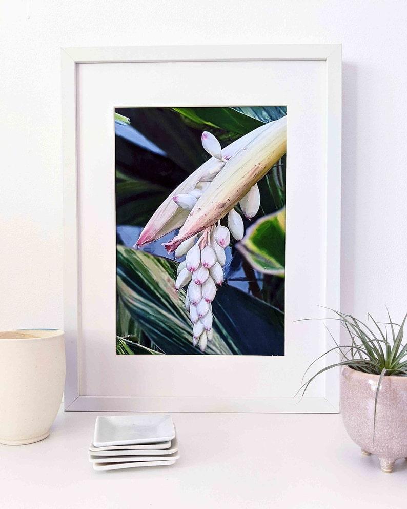 Printable ginger flower digital wall art image 1