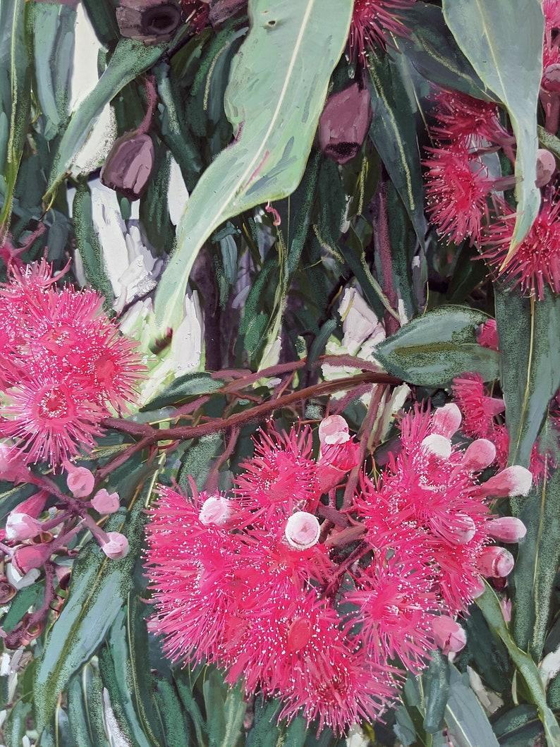 Downloadable digital art print of pink flowering gum tree image 0