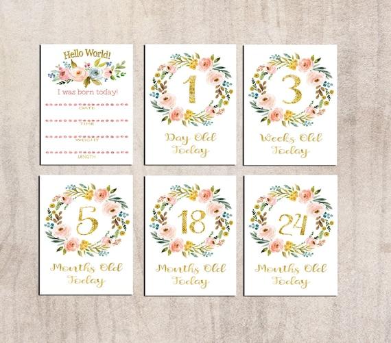 Baby Shower Gift Keepsake Photo Prop Disney Themed Baby Milestone Cards