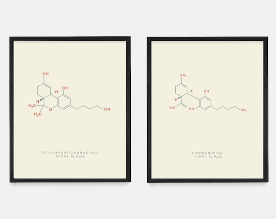Cannabis Poster, THC Molecule, CBD Molecule, Molecule Poster, Molecule Art, Marijuana Art, Marijuana Poster, Cannabis Art, Weed Art