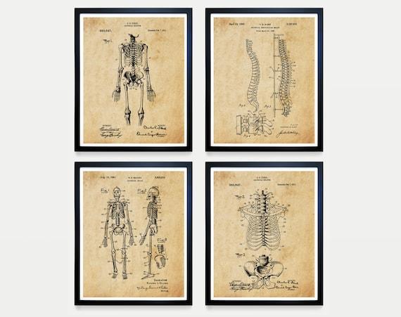 Anatomical Skeleton Patent Art - Skeleton Poster - Skeleton - Anatomy Poster - Anatomy Art - Bones - Medical Art - Medical Student - Doctor