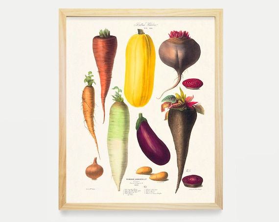 Kitchen Wall Art, Kitchen Poster, Vegetable Poster, Vegetable Art, Food Art, Kitchen Art, Chef, Cooking Poster, Cooking Art, Carrot, Beat