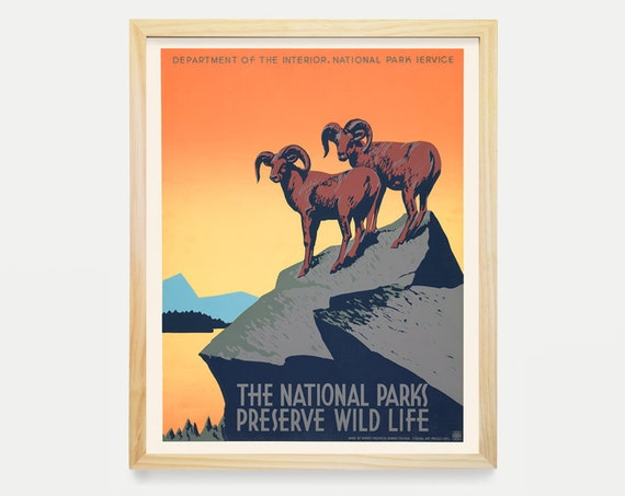 National Parks Poster - WPA Poster - Wild Life - Mountain Goats - Outdoor Art - Wild life - Canvas Wall Art - Mountain Art -