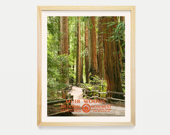 Muir Woods National Monument Poster, Muir Woods Poster, Muir Woods Art, San Francisco, National Park Poster, WPA Poster, WPA Art, Nature Art