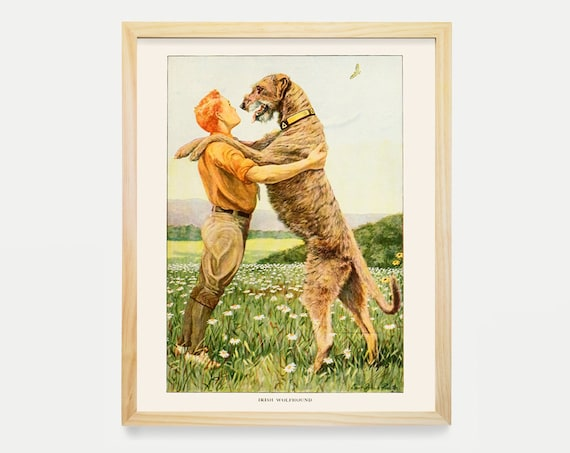 Irish Wolfhound Dog Art Prints Victorian Illustration Vintage Prints Antique Nature Print Natural History Art