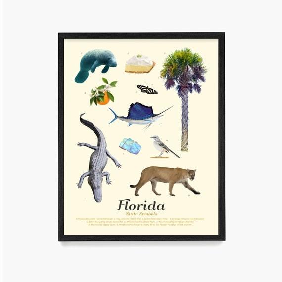 Florida State Symbols Poster, Florida Art, Florida Poster, Florida Wall Art, Florida Decor, Florida Home, Miami Art