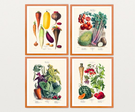 Vegetable Art - Vegetable Print Set - Vegetable Garden - Garden ARt -Garden Poster - Vegetable Poster - Old Vegetable Illustration - Tomatos