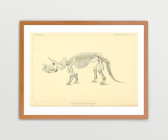 Triceratops Dinosaur - Dinosaur Art - Dinosaur Poster - Dinosaur Wall Art - Triceratops Art - Triceratops Poster - Kids Room Wall Art - Art