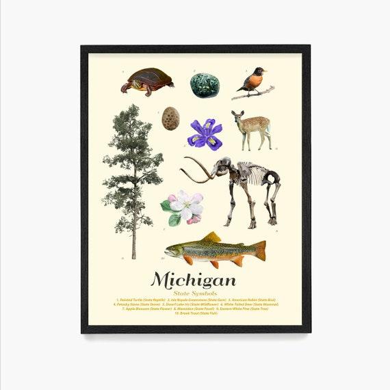 Michigan State Symbols Poster, Michigan Art, Michigan Poster, Michigan Wall Art, Michigan Decor, Michigan Home, Housewarming Art