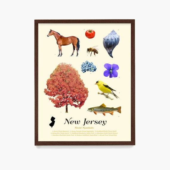 New Jersey State Symbols Poster, New Jersey Art, New Jersey Poster, New Jersey Wall Art, New Jersey Decor, Jersey Home