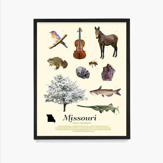 Missouri State Symbols Poster, Missouri Art, Missouri Poster, Missouri Wall Art, Missouri Decor, Missouri Home, Housewarming Art, St Louis