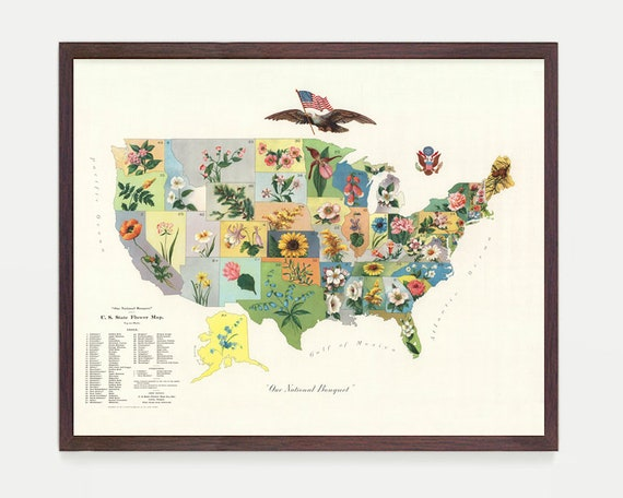Flower Map - Flower Art - State Flower Chart - Florist - Flower Poster - State Flower Art - US Map - USA - US Map Decor - United States Map