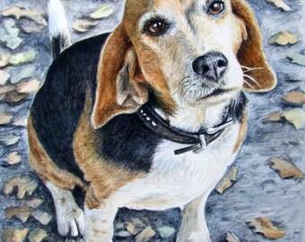 Beagle Portrait - Fine Art Print - Watercolour Painting