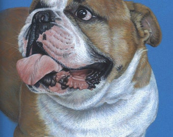 English Bulldog - Fine Art Print 30x40 cm