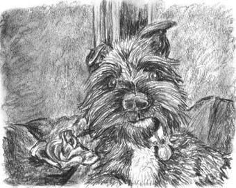 Custom Pet Portrait A5 Pencil