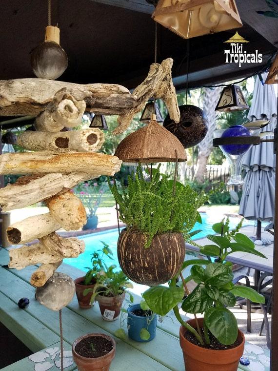 Incroyable Coconut Hanging Planter Tiki Bar Beach Decor Garden | Etsy