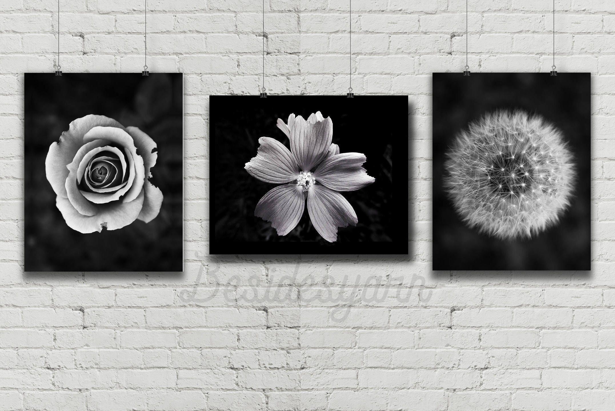 Black And White Art Flower Photography Print Flowers Print Etsy