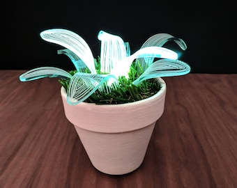 Lamp, Desk Lamp, Floor Lamp, Unique Lamp, Indoor Plant, Housewarming Gift, Night Light, Nursery Light, Table Lamp, Led Lamp, Lamp Plant
