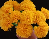 Day of the Dead 12 Marigolds Crepe Paper Flowers, Dia de Los Muertos, Buttercup Yellow, Mexican Flowers, Wedding, Cinco de Mayo, Halloween
