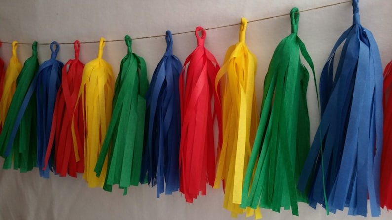 20 Tassel Sesame Street Tissue Paper Garland Birthday Party